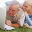 Royalty-Free Stock Photo: Happy elderly couple using a laptop on grass
