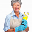 Royalty-Free Stock Photo: Happy senior female gardener holding a tool over white