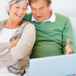 Royalty-Free Stock Photo: Senior couple sitting on a sofa and using a laptop together