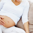 Pregnant woman using laptop while relaxing on a couch - Stock Photo