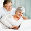 Royalty-Free Stock Photo: Pn[3TZ30FG] Smiling old couple in bed using a laptop