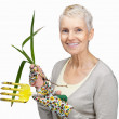 Happy old female gardener holding rake and young plant on white - Stock Photo