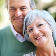 Royalty-Free Stock Photo: Elderly couple standing together in the park