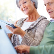 Elderly couple extracting data from the internet using a laptop - Stock Photo