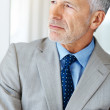 Royalty-Free Stock Photo: Thoughtful mature business man looking away