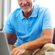 Portrait of a handsome senior man using a laptop - Stock Photo