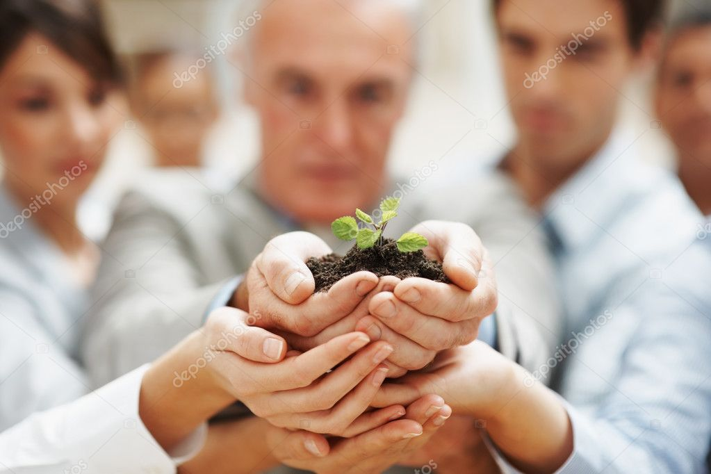 Team growth - Business colleagues holding a young plant together — Stock Photo #3365613