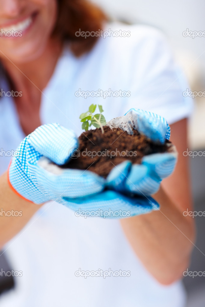 Closeup portrait of woman hand holding a small growing green plant — Stock Photo #3368353