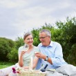 Happy senior couple having a glass of champagne while outdoors - Stock Photo