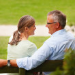 Rear view of an old couple sitting on a bench at the park - Stock Photo