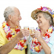 An attractive senior couple on vacation drinking wine - Stock Photo
