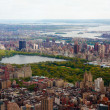 Aerial view of central park with big skyscrapers - Stock Photo