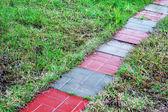Slippery path — Stock Photo