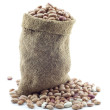 Small bag of beans — Stock Photo