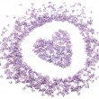 Heart with flowers of lilac — Stock Photo #3107820