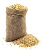 A bag of millet — Stock Photo