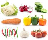выбор овощей — Стоковое фото