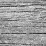 texture gris du bois — Photo #3569822
