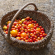 Stock Photo: Home yield different tomatoes