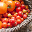 Home yield different tomatoes — Stock Photo