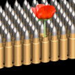 Cartridges and flower — Stockfoto #3222372