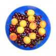 Apricots and cherries on the blue dish. — Stock Photo