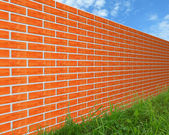 The brick wall on the grass. — Stock Photo