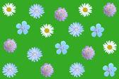 Wildflowers. — Stock Photo