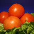 Stock Photo: Tomatoe