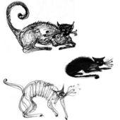 图解可爱猫 — 图库照片