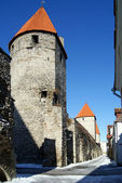 Towers and walls — Stock Photo