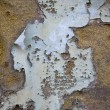 Stock Photo: Texture: decay 2