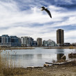 Condominiums across pond — Stock Photo #2705878