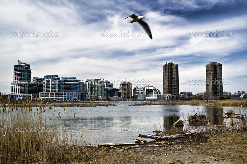 These are condominiums viewed across a pond at Humber Bay in Toronto, Ontario, Canada — Zdjęcie stockowe #2705878