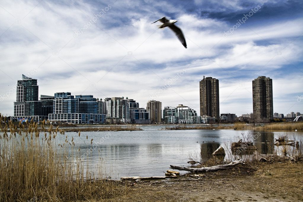 These are condominiums viewed across a pond at Humber Bay in Toronto, Ontario, Canada — Foto Stock #2705878