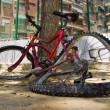 Broken bike — Foto Stock