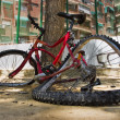 Broken bike — Photo