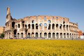 コロッセオ — ストック写真
