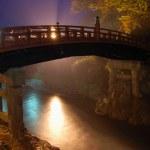 Japanese Bridge — Stock Photo