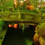 ogród japoński w nocy — Zdjęcie stockowe