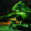 Zen garden by night - Stock Photo