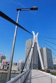 Hangbrug verticale — Stockfoto