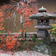 Stock Photo: Japanese lantern and autumnal maple tree