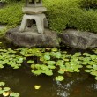 Zen garden&pond — Stock Photo