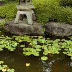 Zen garden&pond — Stock Photo