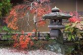 Japanese lantern and autumnal maple tree — Stock Photo