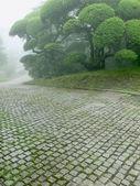 Japanese park — Stok fotoğraf