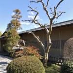 ogrod japoński — Zdjęcie stockowe