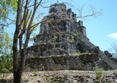 Mayan Ruins in Muyil Mexico — Foto Stock
