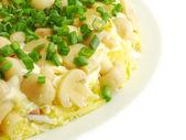 Salad mushroom glade — Stock Photo